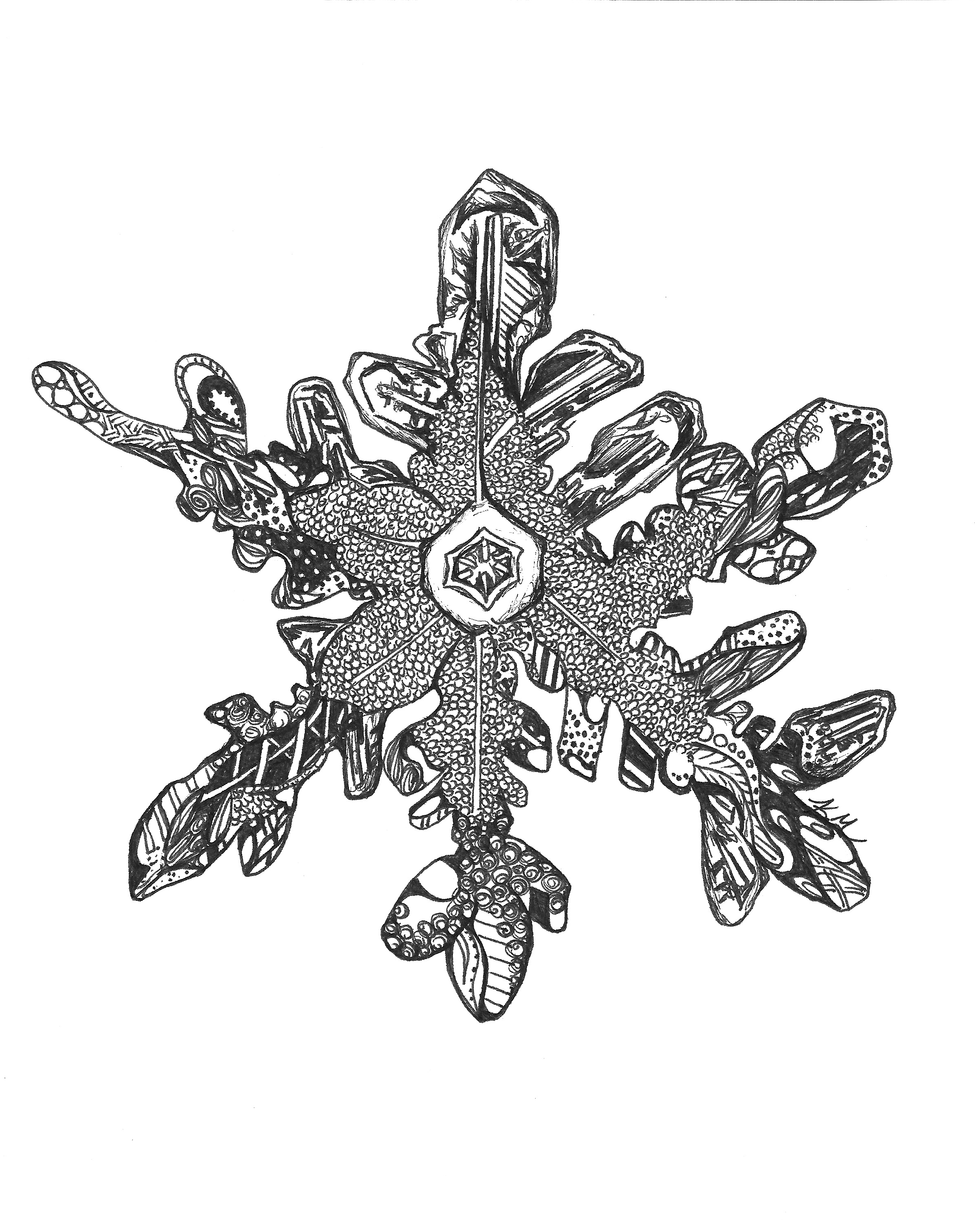 KM Snowflake_edited