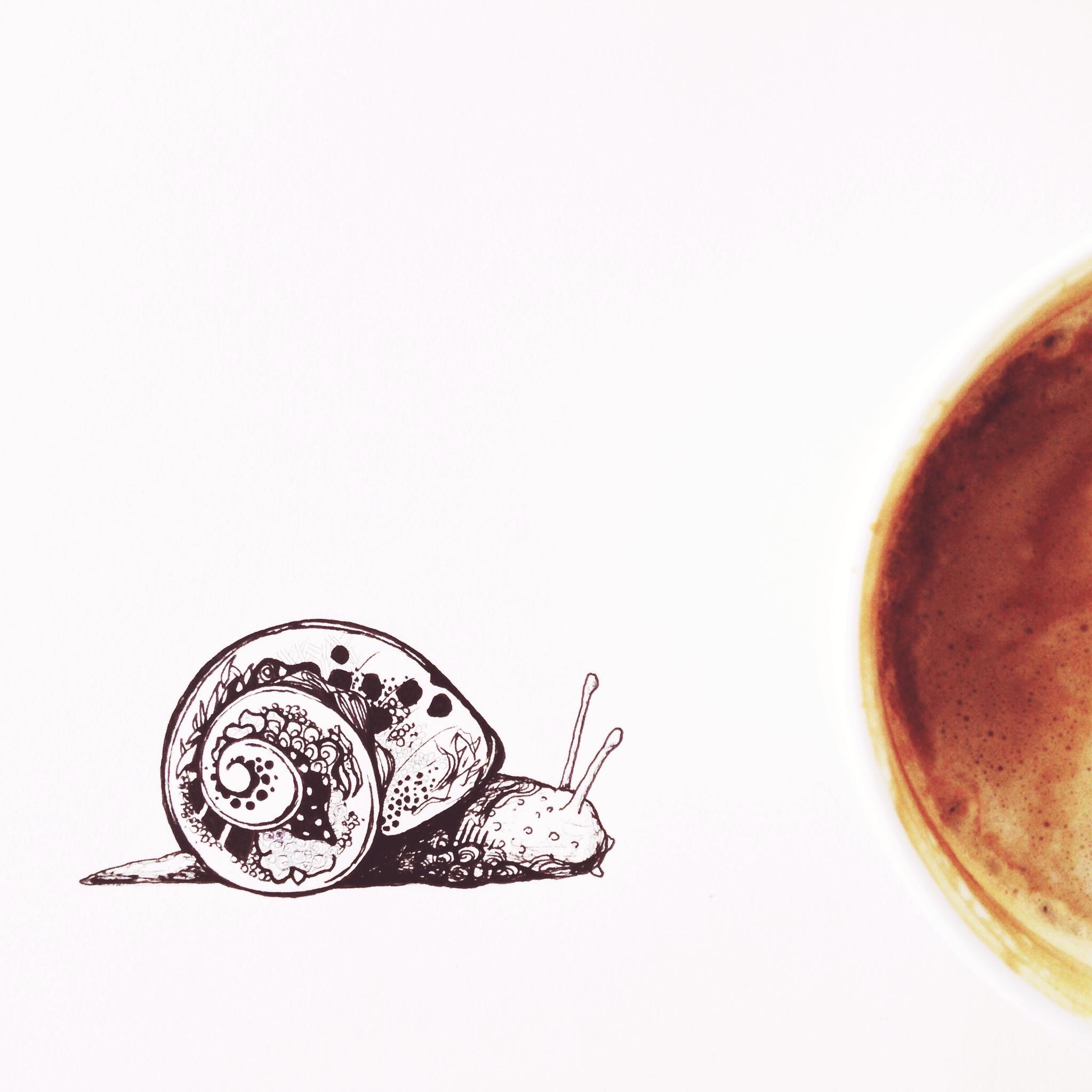 Kelsey Montague snail